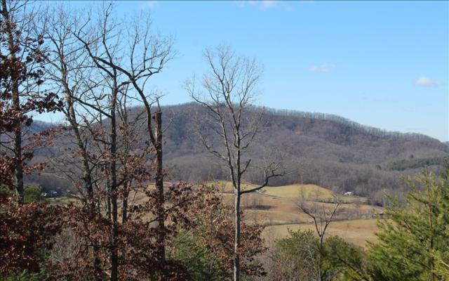 LOT 2 Mission Hill Rd, Hayesville, NC 28904 (MLS #274613) :: RE/MAX Town & Country