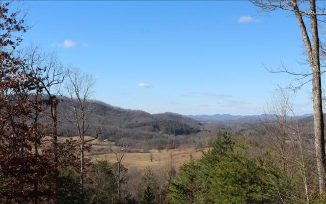 LOT 9 Mission Hill Rd, Hayesville, NC 28904 (MLS #274621) :: RE/MAX Town & Country