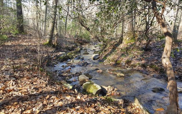 47,48 Forrest Creek, Talking Rock, GA 30175 (MLS #274659) :: RE/MAX Town & Country