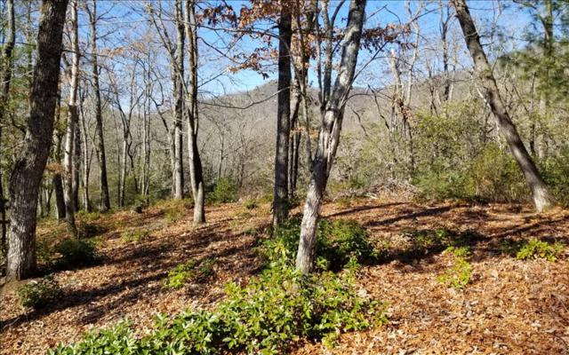 7.8 A Tusquittee Laurel, Hayesville, NC 28904 (MLS #274671) :: RE/MAX Town & Country
