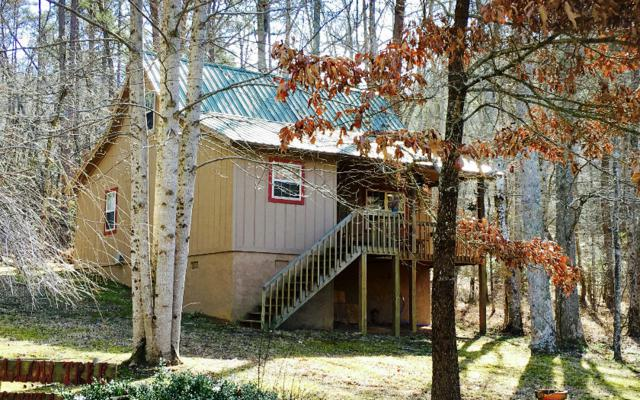 161 Skid Strip Lane, Hayesville, NC 28904 (MLS #274819) :: RE/MAX Town & Country
