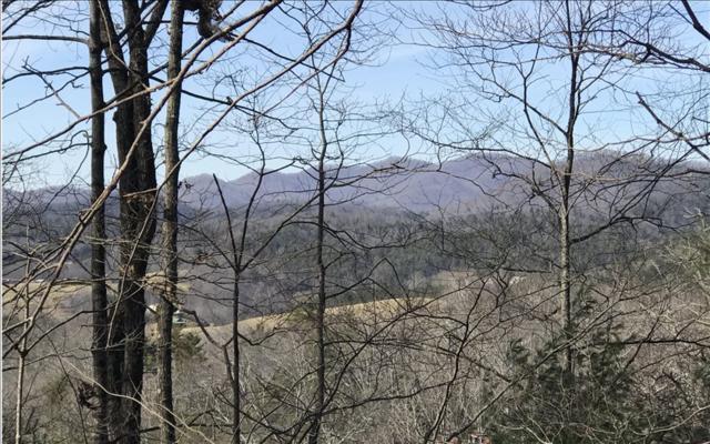 LOT 9 Walnut Springs Road, Blairsville, GA 30512 (MLS #274871) :: RE/MAX Town & Country