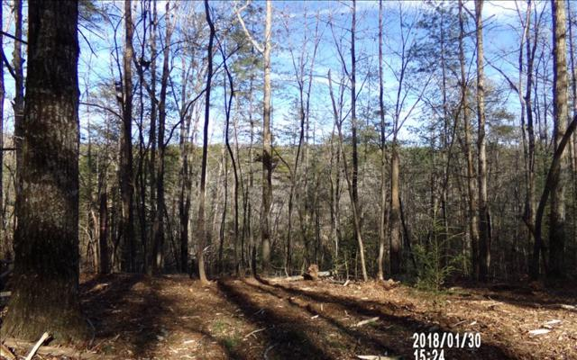 4.34 Acres Craigtown Rd, Ellijay, GA 30540 (MLS #274905) :: RE/MAX Town & Country