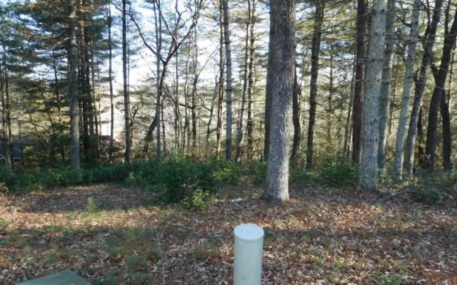 LT 10 Rainbow Drive, Blairsville, GA 30512 (MLS #274907) :: RE/MAX Town & Country