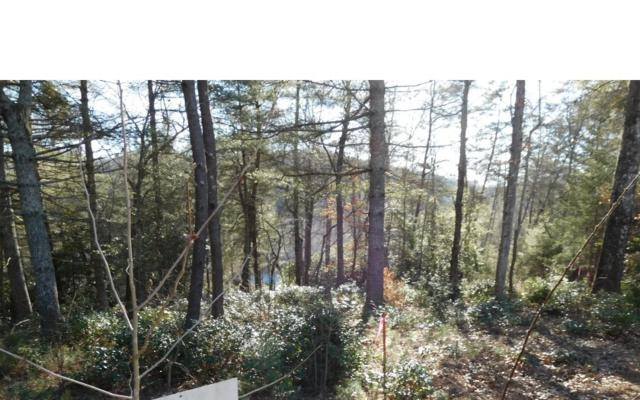 LT 11 Rainbow Drive, Blairsville, GA 30512 (MLS #274909) :: RE/MAX Town & Country