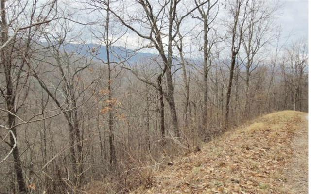 Red Bird Dr-8.9 Acre, Hayesville, NC 28904 (MLS #274911) :: RE/MAX Town & Country
