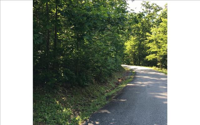 LOT13 Bear Trail, Hiawassee, GA 30546 (MLS #274921) :: RE/MAX Town & Country