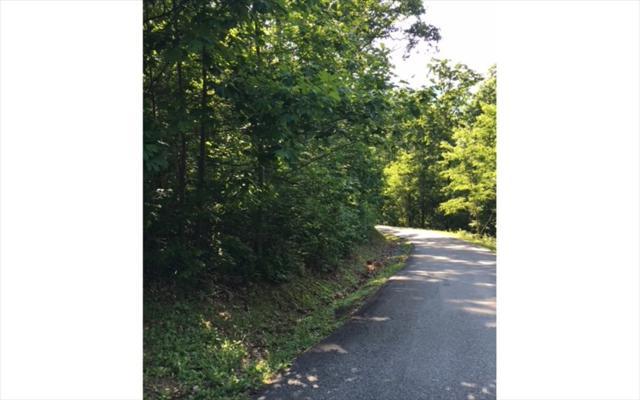 LOT14 Bear Trail, Hiawassee, GA 30546 (MLS #274922) :: RE/MAX Town & Country