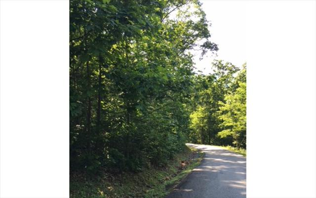 LOT15 Bear Trail, Hiawassee, GA 30546 (MLS #274923) :: RE/MAX Town & Country