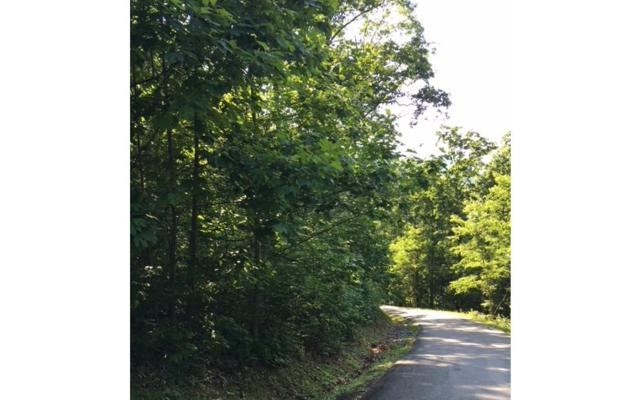 LOT18 Bear Trail, Hiawassee, GA 30546 (MLS #274924) :: RE/MAX Town & Country