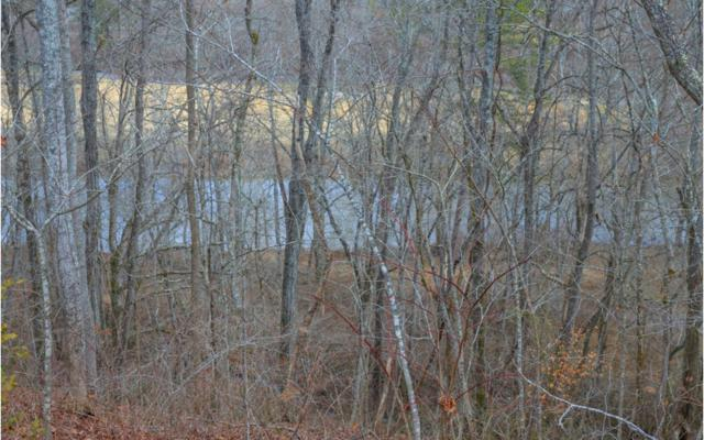 2LOTS River Ridge, Blue Ridge, GA 30513 (MLS #274945) :: RE/MAX Town & Country