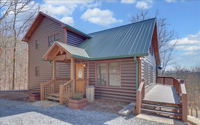 366 June Bug Lane, Blue Ridge, GA 30513 (MLS #275037) :: RE/MAX Town & Country