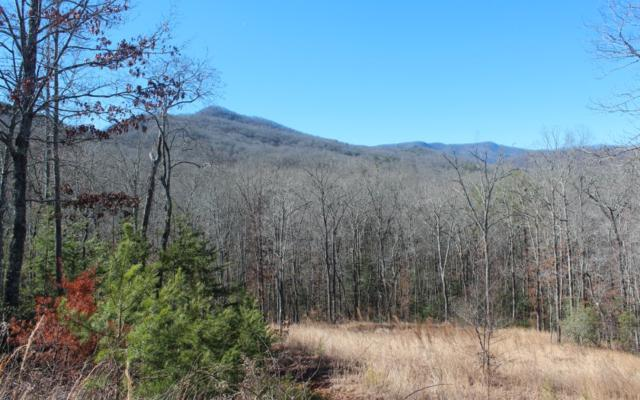 LOT 4 Sweetwater Cove, Hiawasssee, GA 30546 (MLS #275078) :: RE/MAX Town & Country