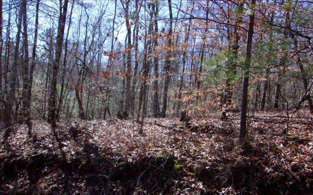 Left Turn, Blue Ridge, GA 30513 (MLS #275114) :: RE/MAX Town & Country