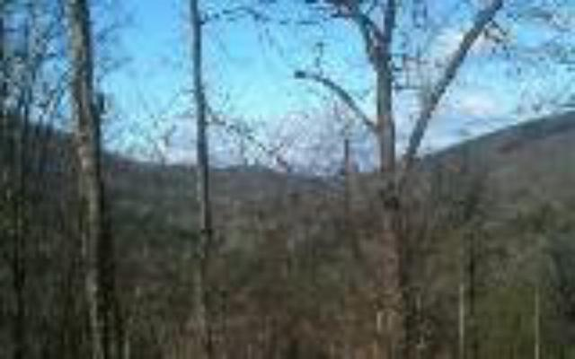 LT4&5 Mossy Rock, Blairsville, GA 30512 (MLS #275190) :: RE/MAX Town & Country