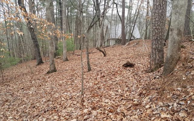 L 221 Mohawk Trail, Ellijay, GA 30540 (MLS #275191) :: RE/MAX Town & Country