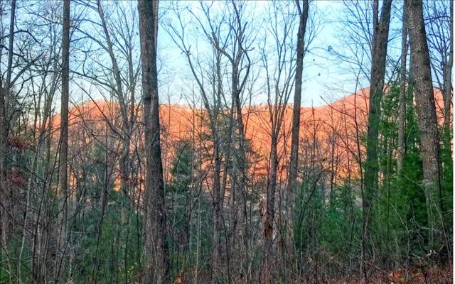 LOT 2 Trail Tree Drive, Blairsville, GA 30512 (MLS #275210) :: RE/MAX Town & Country