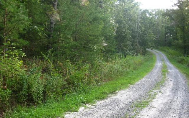 LT 20 Crabapple Lane, Mineral Bluff, GA 30559 (MLS #275299) :: RE/MAX Town & Country
