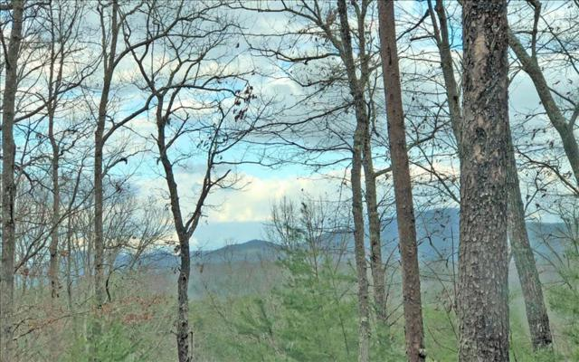 LT 11 Humphrey Heights, Mineral Bluff, GA 30559 (MLS #275308) :: RE/MAX Town & Country