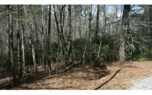 High Lance, Blairsville, GA 30512 (MLS #275315) :: RE/MAX Town & Country