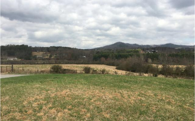 LT 18 Warne Estates, Warne, NC 28909 (MLS #275357) :: RE/MAX Town & Country