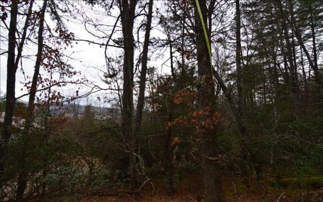 LT11A Caesars Cove Rd, Hayesville, NC 28904 (MLS #275362) :: RE/MAX Town & Country