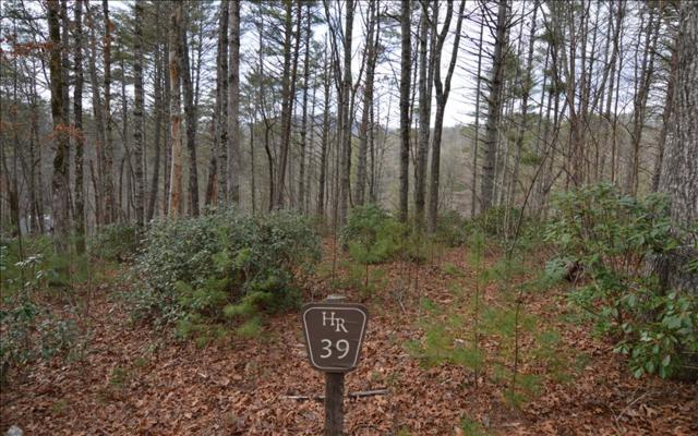 LT 39 Hidden River, Hayesville, NC 28904 (MLS #275363) :: RE/MAX Town & Country
