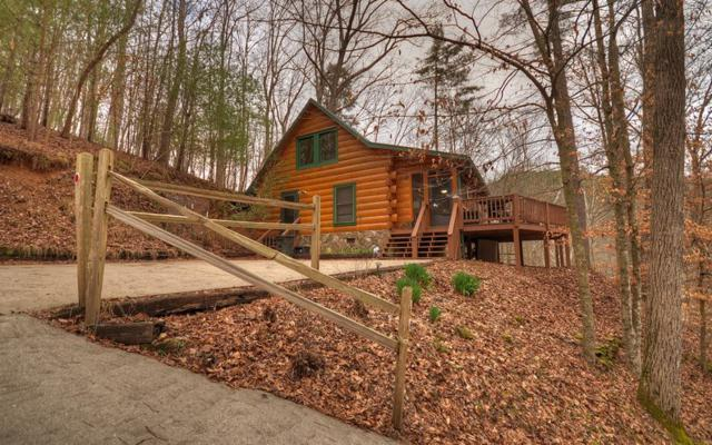 534 Spindrift Court, Ellijay, GA 30540 (MLS #275377) :: RE/MAX Town & Country