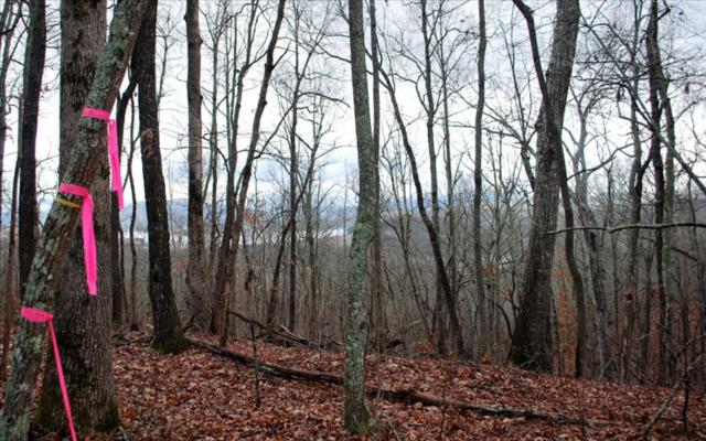 TR4 Lakeview Heights, Hayesville, NC 28904 (MLS #275386) :: RE/MAX Town & Country