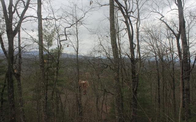 LOT 4 Raven Ridge, Mineral Bluff, GA 30559 (MLS #275411) :: RE/MAX Town & Country