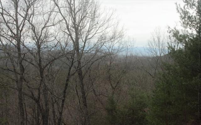 LOT 1 Raven Ridge, Mineral Bluff, GA 30559 (MLS #275412) :: RE/MAX Town & Country