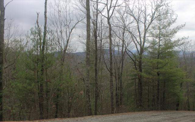LOT 2 Raven Ridge, Mineral Bluff, GA 30559 (MLS #275413) :: RE/MAX Town & Country