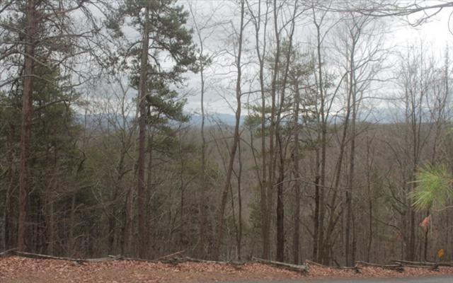 LOT62 Raven Ridge, Mineral Bluff, GA 30559 (MLS #275416) :: RE/MAX Town & Country