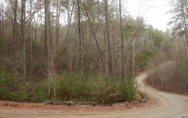 LOT 8 Raven Ridge, Mineral Bluff, GA 30559 (MLS #275428) :: RE/MAX Town & Country