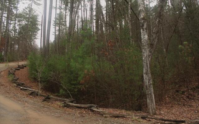 LOT 9 Raven Ridge, Mineral Bluff, GA 30559 (MLS #275429) :: RE/MAX Town & Country