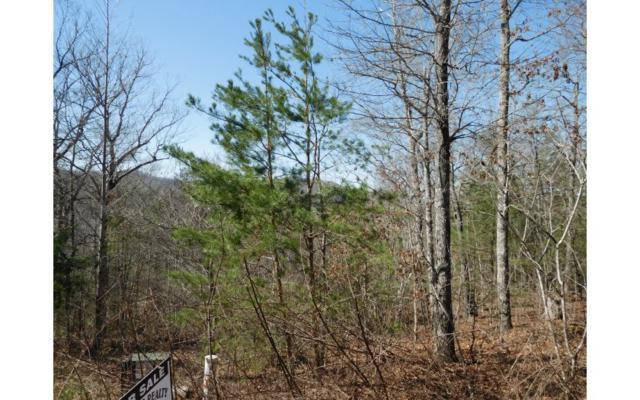 LT 6 Up The Ridge, Blairsville, GA 30512 (MLS #275446) :: RE/MAX Town & Country
