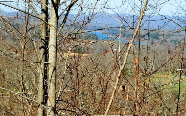 LT 85 Dan Knob, Hayesville, NC 28904 (MLS #275466) :: RE/MAX Town & Country