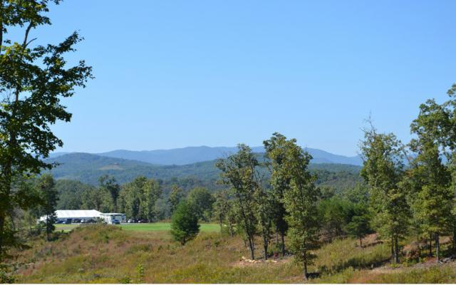 LOT52 Old Toccoa Loop, Mineral Bluff, GA 30559 (MLS #275658) :: RE/MAX Town & Country