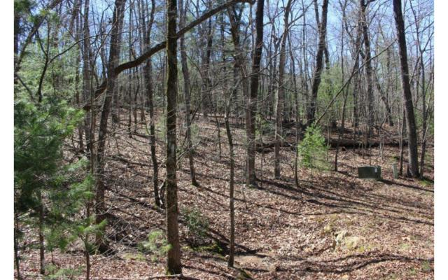 Spring Camp Rd L20, Ellijay, GA 30536 (MLS #275689) :: RE/MAX Town & Country