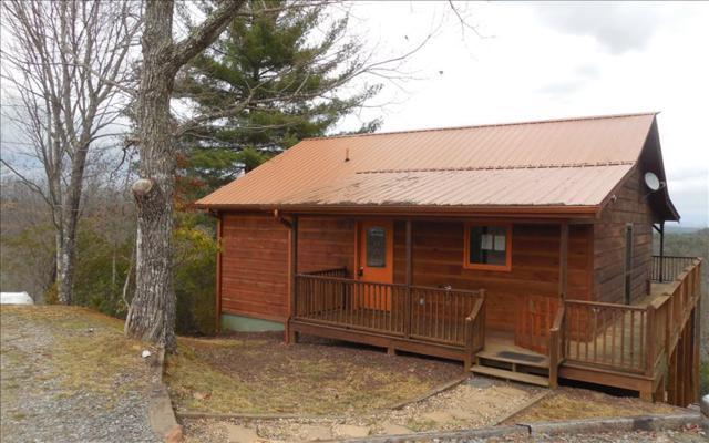 832 Pleasant Gap Drive, Morganton, GA 30560 (MLS #275752) :: RE/MAX Town & Country