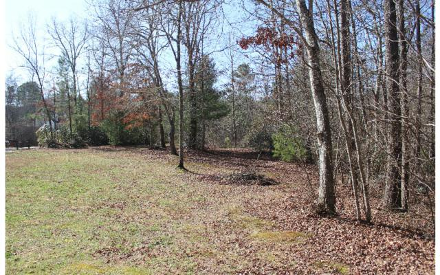 251 Emerald Downs Drive, Murphy, NC 28906 (MLS #275795) :: RE/MAX Town & Country