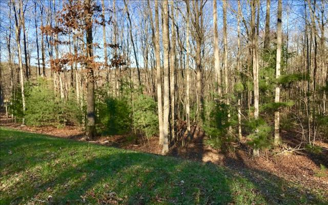 LOT 1 Clay Drive, Blairsville, GA 30512 (MLS #275850) :: RE/MAX Town & Country