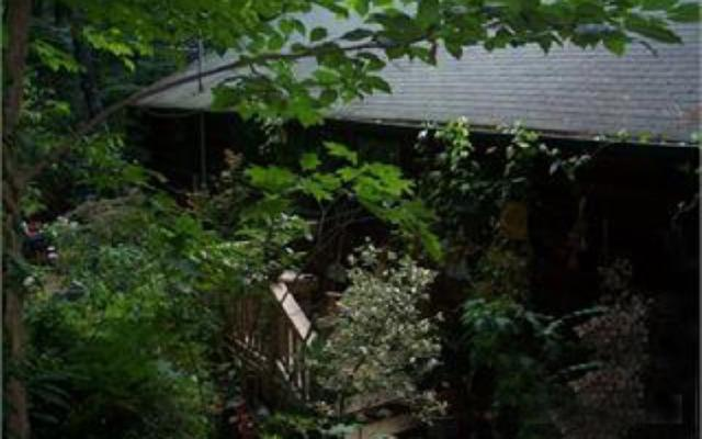 112 River Ranch Road, Ellijay, GA 30560 (MLS #275858) :: RE/MAX Town & Country