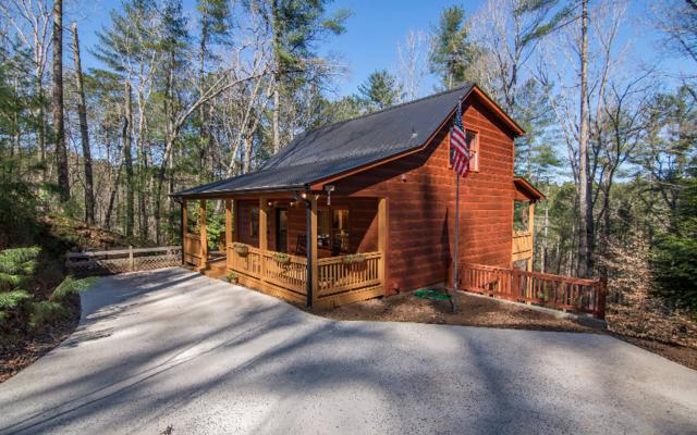 488 Parnell Drive, Ellijay, GA 30540 (MLS #275884) :: RE/MAX Town & Country