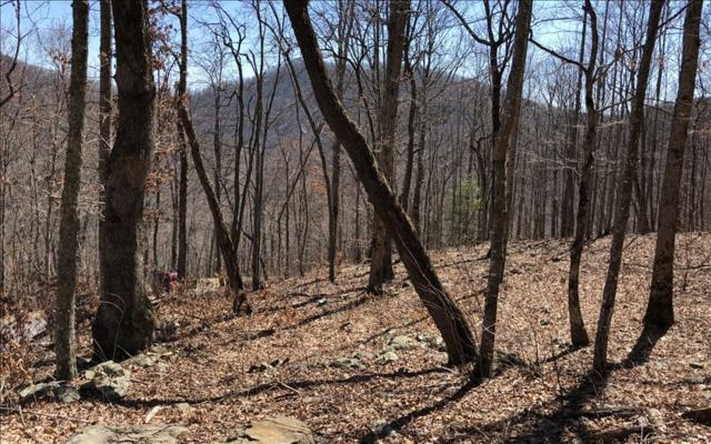 LOT21 Overlook At Yh, Young Harris, GA 30582 (MLS #275889) :: RE/MAX Town & Country
