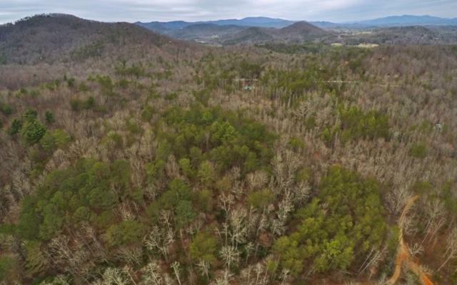 Wehunt Road, Blue Ridge, GA 30513 (MLS #275908) :: RE/MAX Town & Country