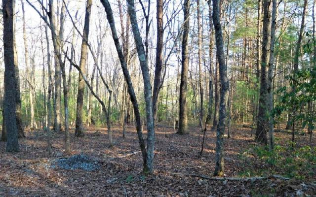 12 AC Old Mill Pond, Mineral Bluff, GA 30559 (MLS #275915) :: RE/MAX Town & Country