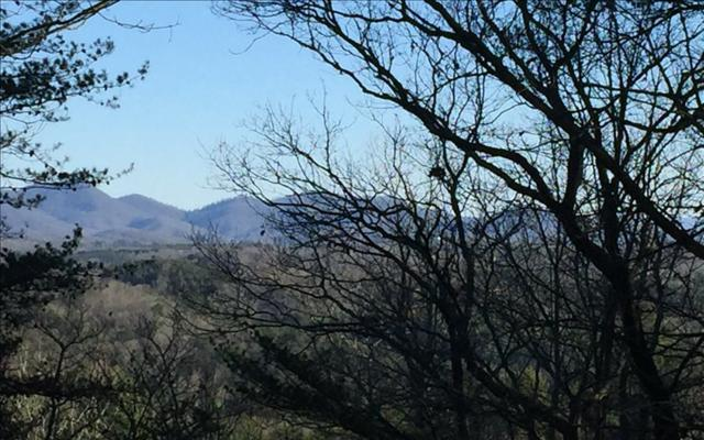 Mountain Laurel Ridg, Mineral Bluff, GA 30559 (MLS #275939) :: RE/MAX Town & Country