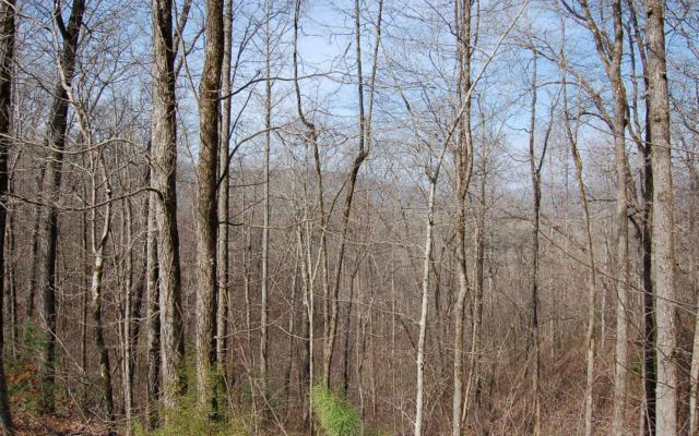 Bethabara View Lot 9, Hayesville, NC 28904 (MLS #275951) :: RE/MAX Town & Country