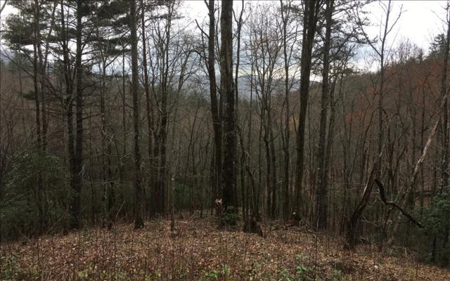 Shelton Springs, Hayesville, NC 28904 (MLS #276041) :: RE/MAX Town & Country